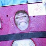 Iran Launches Monkey into Space