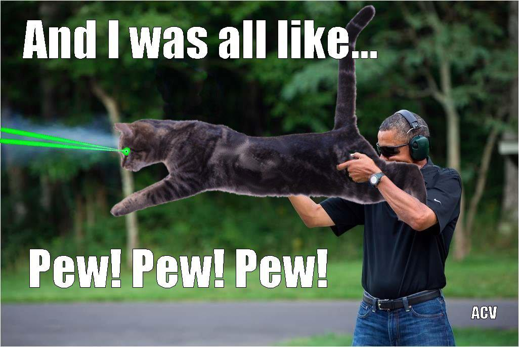 obama skeet laser cat