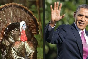 Thanksgiving Turkeys: The Worst of Democrats in 2014 awful terrible horrible Democratic politicians President Obama Hillary Clinton Harry Reid Mary Landrieu Mark Pryor Debbie Wasserman Schultz Joe Biden Jonathan Gruber Nancy Pelosi Susan Rice Wendy Davis John Kerry Washington Free Beacon funny video compilation montage